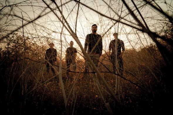 Palms band 2013
