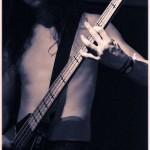 Vektor-band-0103