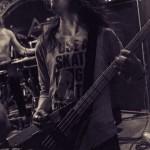 Vektor-band-022