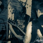 plague-dogs-band-7