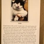 homeward-bound-philly-paws-benefit-29