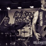 Plague-Dogs-band-008