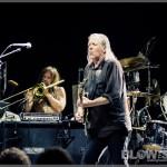 Swans-band-032