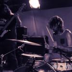 American-Sharks-band-019