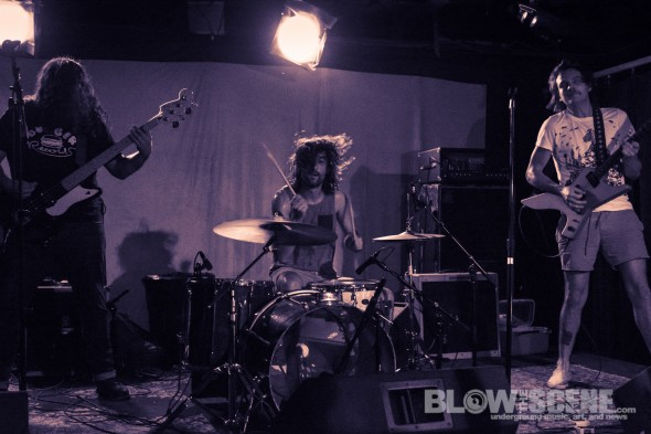 American-Sharks-band-021