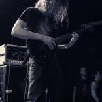Vektor - band