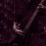 Vektor-band-063