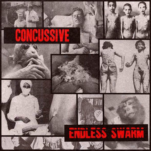 concussive endless swarm
