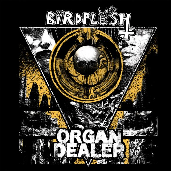 birdflesh organ dealer